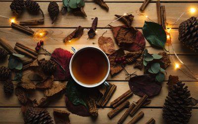 Purer Genuss: Spannende Fakten, die du über Tee noch nicht weißt