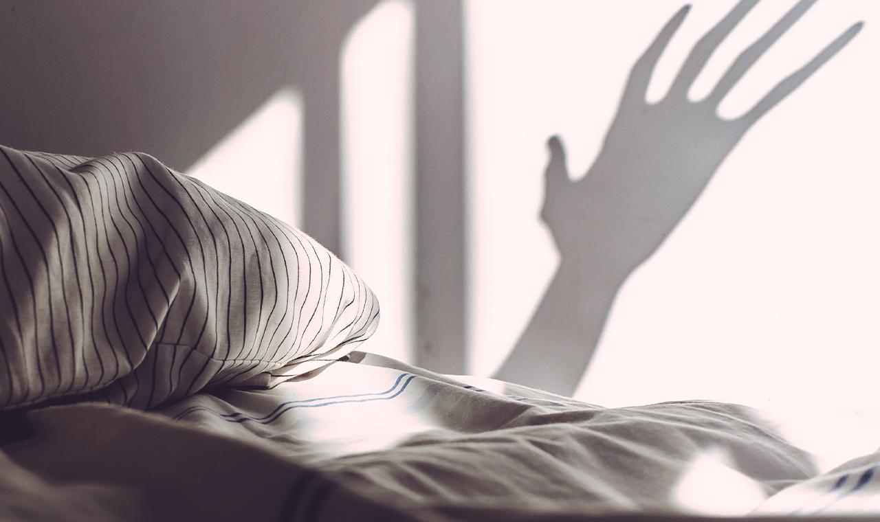 Auf Der Jagd In Deinem Schlafzimmer So Wirst Du Silberfische Erfolgreich Los Hongi Blog Schlafratgeber